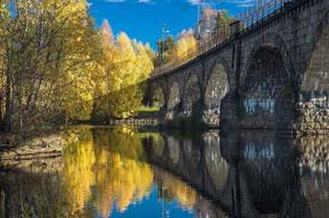 fall-colors-ringerike-norway
